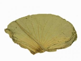 Fat Choy Dried Lotus Leaf